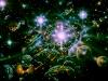 ASTRONOMY DOMINE  1982